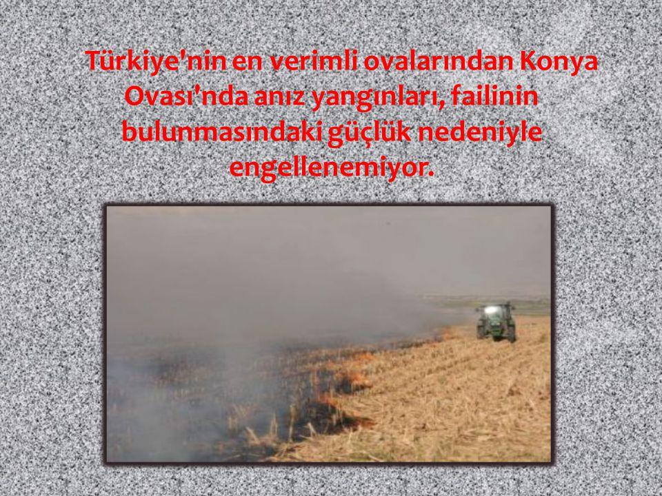 Türkiye'nin en verimli ovalarından Konya Ovası'nda anız yangınları, failinin bulunmasındaki güçlük nedeniyle engellenemiyor.