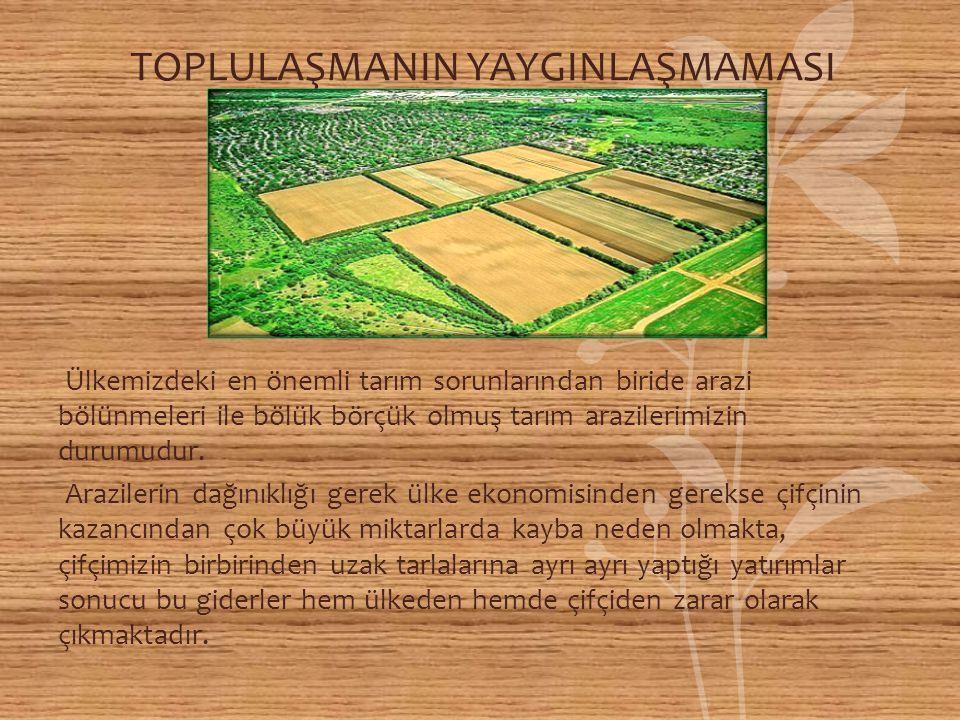TOPLULAŞMANIN YAYGINLAŞMAMASI Ülkemizdeki en önemli tarım sorunlarından biride arazi bölünmeleri ile bölük börçük olmuş tarım arazilerimizin durumudur