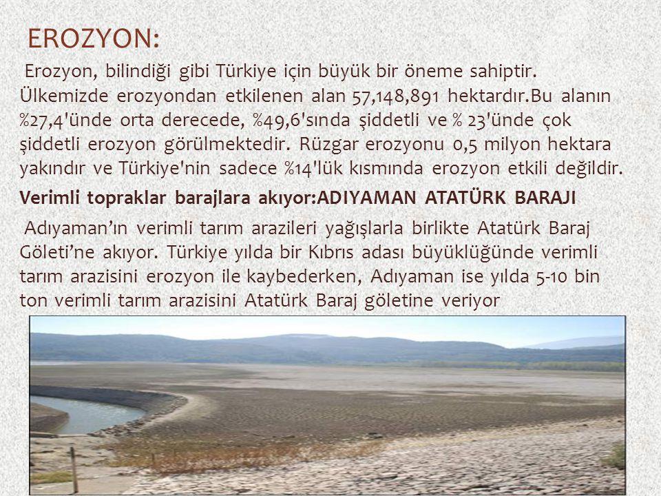 EROZYON: Erozyon, bilindiği gibi Türkiye için büyük bir öneme sahiptir. Ülkemizde erozyondan etkilenen alan 57,148,891 hektardır.Bu alanın %27,4'ünde