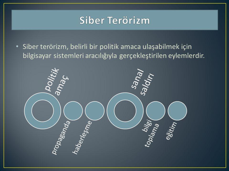 Siber terörizm, belirli bir politik amaca ulaşabilmek için bilgisayar sistemleri aracılığıyla gerçekleştirilen eylemlerdir. politik amaç propagandahab