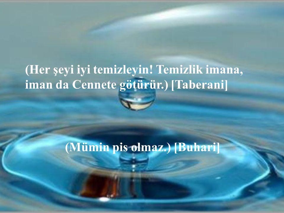 (Her şeyi iyi temizleyin! Temizlik imana, iman da Cennete götürür.) [Taberani] (Mümin pis olmaz.) [Buhari]