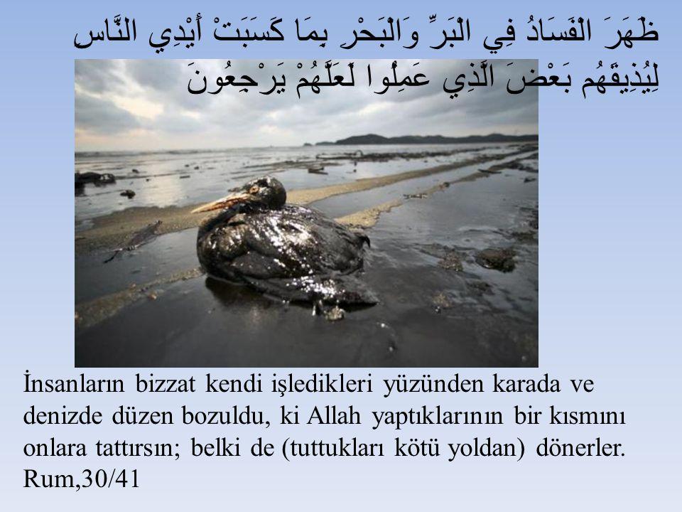 İnsanların bizzat kendi işledikleri yüzünden karada ve denizde düzen bozuldu, ki Allah yaptıklarının bir kısmını onlara tattırsın; belki de (tuttukları kötü yoldan) dönerler.