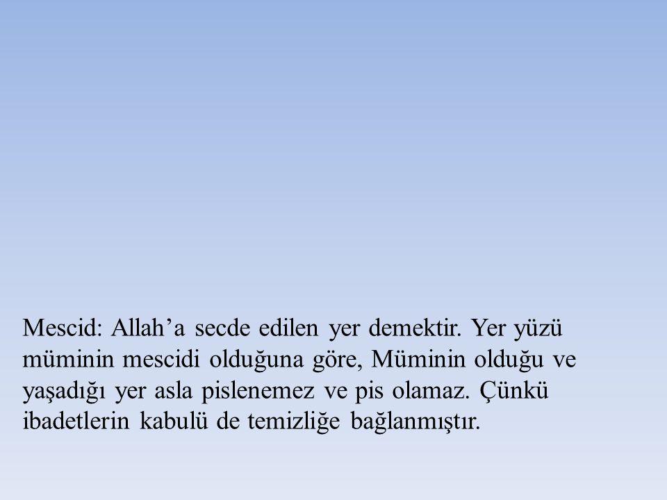 Mescid: Allah'a secde edilen yer demektir. Yer yüzü müminin mescidi olduğuna göre, Müminin olduğu ve yaşadığı yer asla pislenemez ve pis olamaz. Çünkü