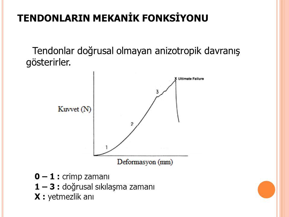 TENDONLARIN MEKANİK FONKSİYONU Tendonlar doğrusal olmayan anizotropik davranış gösterirler. 0 – 1 : crimp zamanı 1 – 3 : doğrusal sıkılaşma zamanı X :