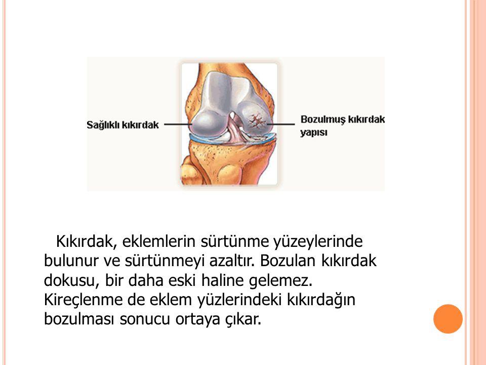 Kıkırdak, eklemlerin sürtünme yüzeylerinde bulunur ve sürtünmeyi azaltır. Bozulan kıkırdak dokusu, bir daha eski haline gelemez. Kireçlenme de eklem y