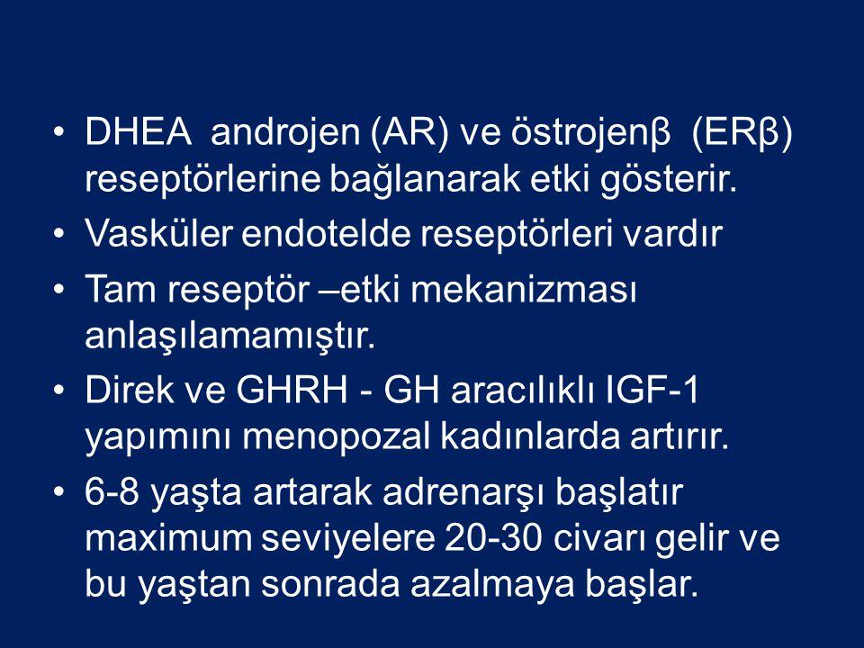 DHEA androjen (AR) ve östrojenβ (ERβ) reseptörlerine bağlanarak etki gösterir. Vasküler endotelde reseptörleri vardır Tam reseptör –etki mekanizması a