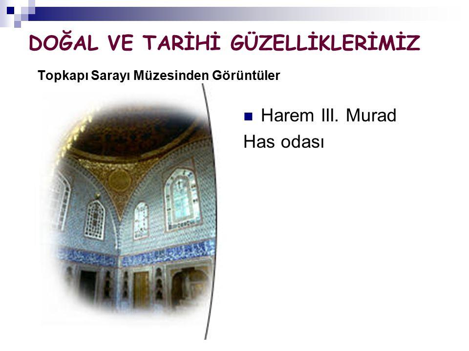 DOĞAL VE TARİHİ GÜZELLİKLERİMİZ Topkapı Sarayı Müzesinden Görüntüler Harem III. Murad Has odası