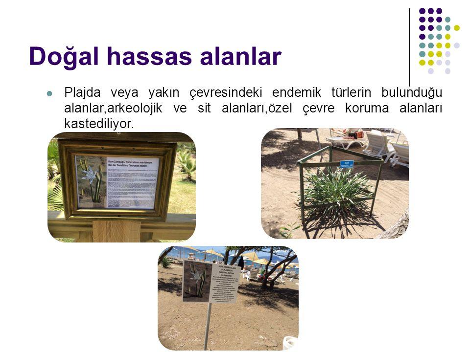Doğal hassas alanlar Plajda veya yakın çevresindeki endemik türlerin bulunduğu alanlar,arkeolojik ve sit alanları,özel çevre koruma alanları kastedili