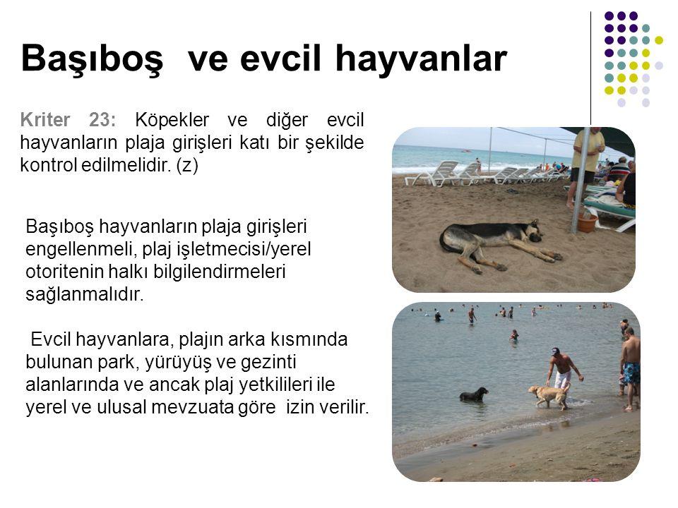 Başıboş ve evcil hayvanlar Kriter 23: Köpekler ve diğer evcil hayvanların plaja girişleri katı bir şekilde kontrol edilmelidir. (z) Başıboş hayvanları