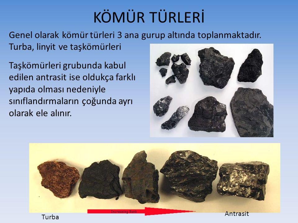 KÖMÜR TÜRLERİ Genel olarak kömür türleri 3 ana gurup altında toplanmaktadır. Turba, linyit ve taşkömürleri Turba Antrasit Taşkömürleri grubunda kabul