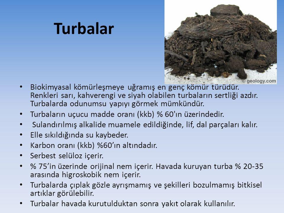 Turbalar Biokimyasal kömürleşmeye uğramış en genç kömür türüdür. Renkleri sarı, kahverengi ve siyah olabilen turbaların sertliği azdır. Turbalarda odu