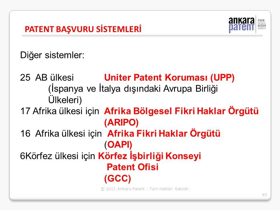 Diğer sistemler: 25 AB ülkesi Uniter Patent Koruması (UPP) (İspanya ve İtalya dışındaki Avrupa Birliği Ülkeleri) 17 Afrika ülkesi için Afrika Bölgesel