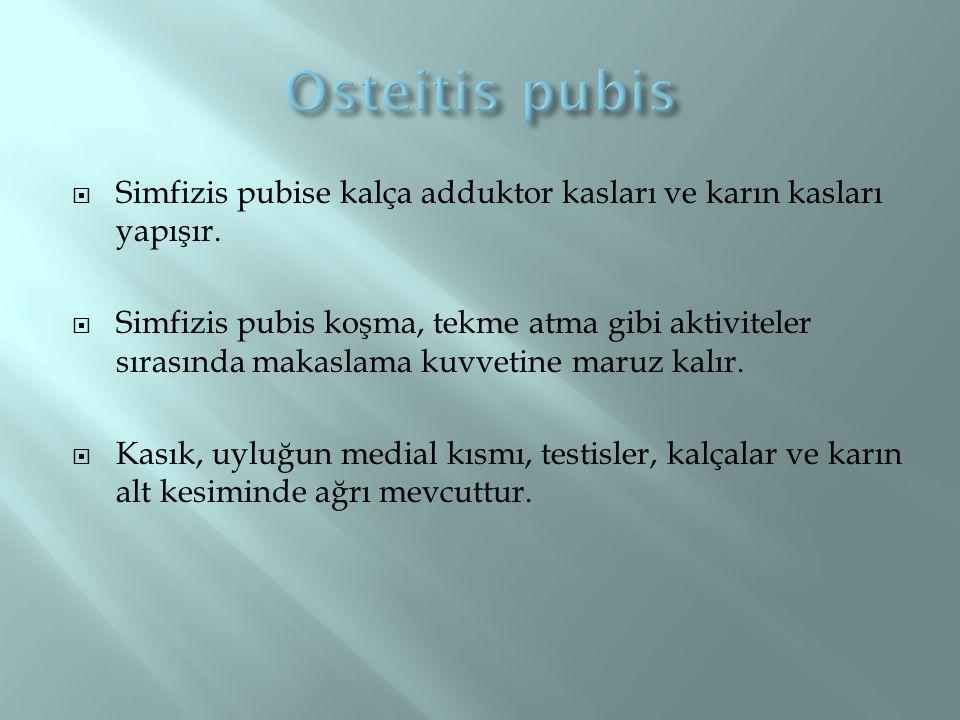  Simfizis pubise kalça adduktor kasları ve karın kasları yapışır.  Simfizis pubis koşma, tekme atma gibi aktiviteler sırasında makaslama kuvvetine m