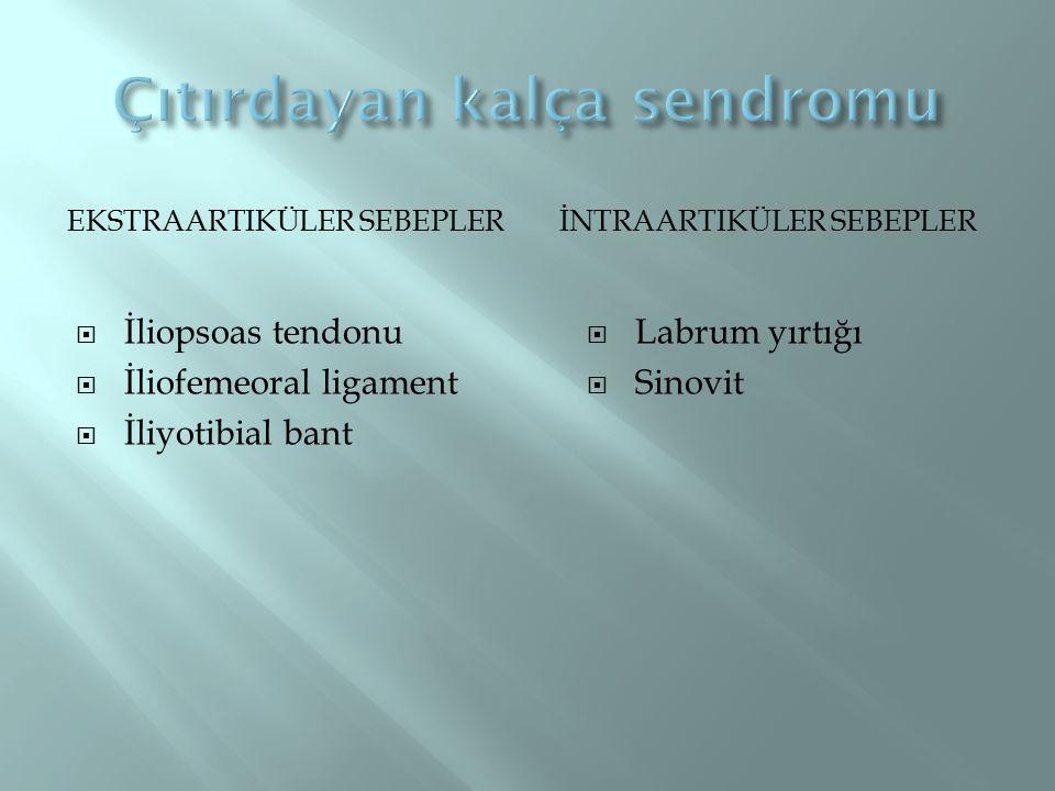 EKSTRAARTIKÜLER SEBEPLERİNTRAARTIKÜLER SEBEPLER  İliopsoas tendonu  İliofemeoral ligament  İliyotibial bant  Labrum yırtığı  Sinovit