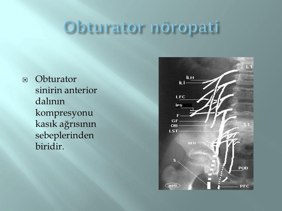  Obturator sinirin anterior dalının kompresyonu kasık ağrısının sebeplerinden biridir.