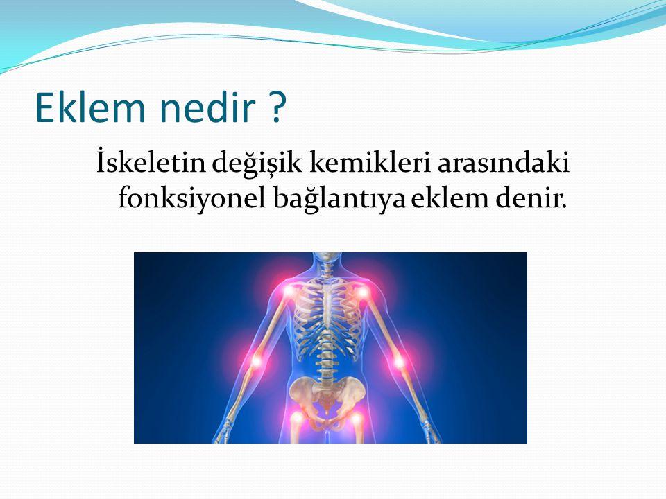 Eklem nedir ? İskeletin değişik kemikleri arasındaki fonksiyonel bağlantıya eklem denir.
