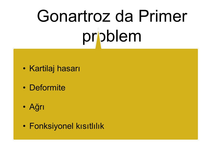 Gonartroz da Primer problem Kartilaj hasarı Deformite Ağrı Fonksiyonel kısıtlılık