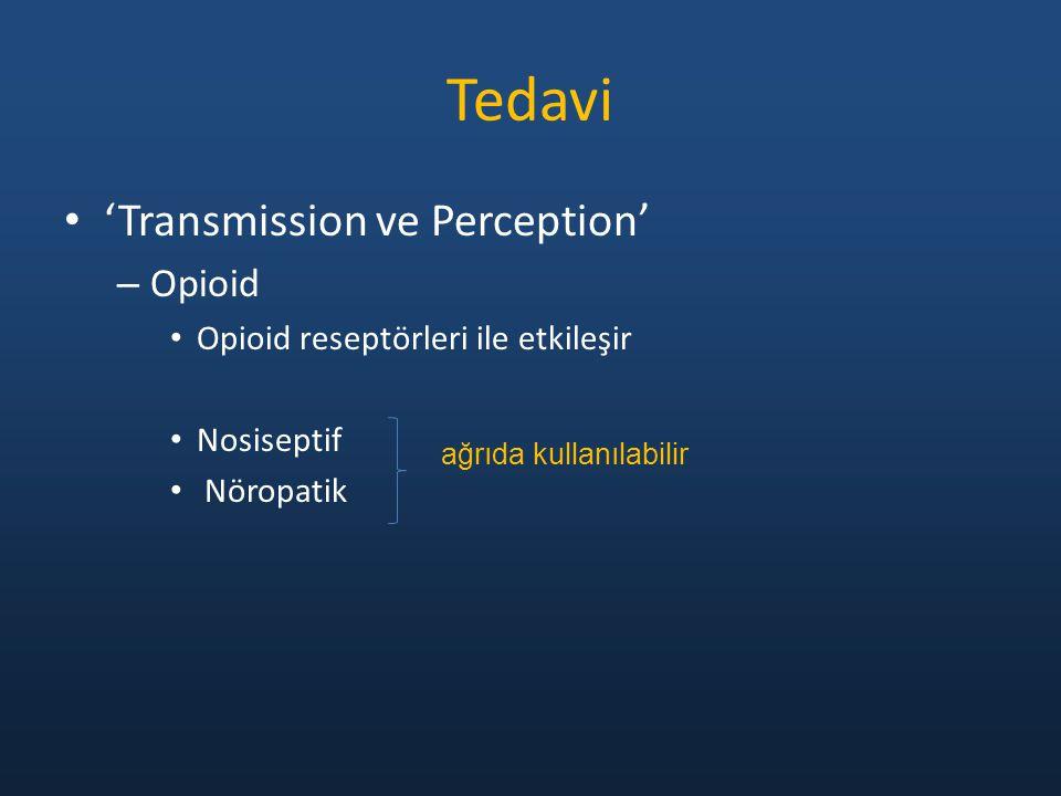 'Transmission ve Perception' – Opioid Opioid reseptörleri ile etkileşir Nosiseptif Nöropatik Tedavi ağrıda kullanılabilir