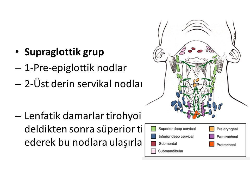 Supraglottik grup – 1-Pre-epiglottik nodlar – 2-Üst derin servikal nodlar – Lenfatik damarlar tirohyoid membranı deldikten sonra süperior tiroid arter
