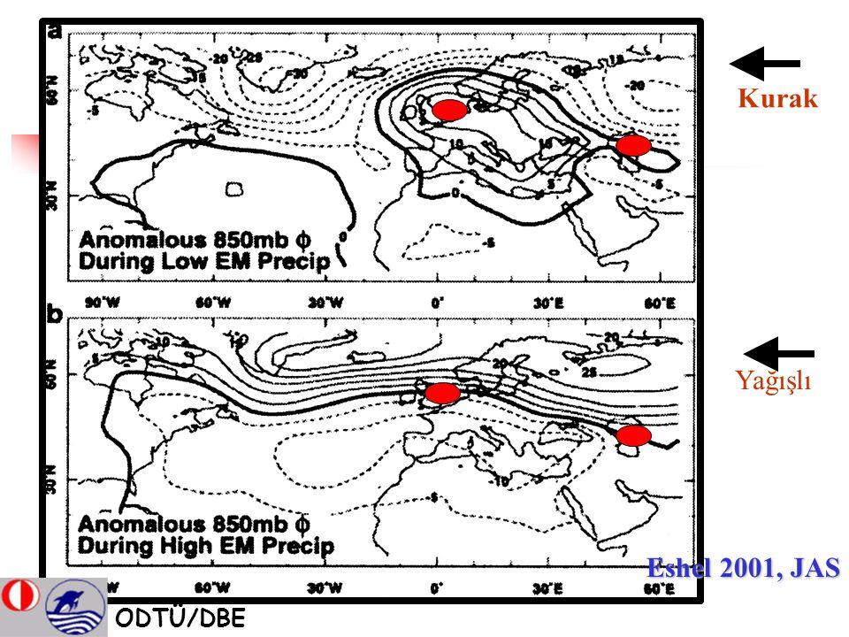 Eshel 2001, JAS Kurak Yağışlı ODTÜ/DBE