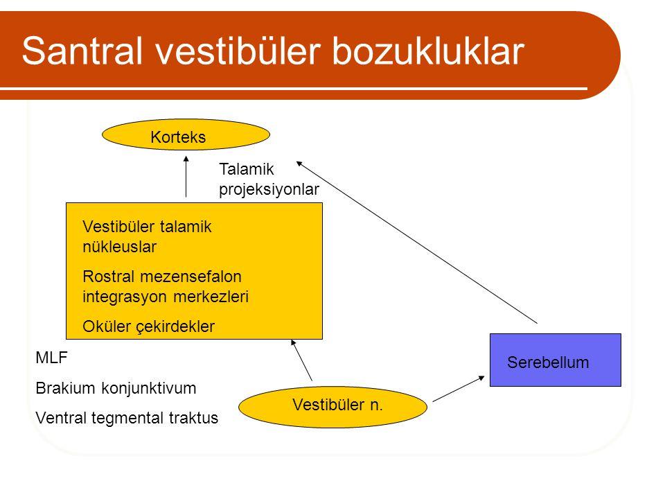 Santral vestibüler bozukluklar MLF Brakium konjunktivum Ventral tegmental traktus Vestibüler n. Vestibüler talamik nükleuslar Rostral mezensefalon int
