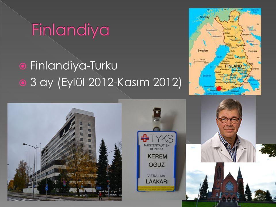  Finlandiya-Turku  3 ay (Eylül 2012-Kasım 2012)