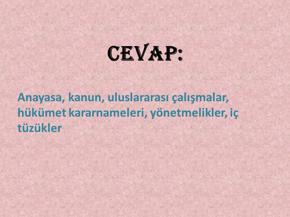 CEVAP: Anayasa, kanun, uluslararası çalışmalar, hükümet kararnameleri, yönetmelikler, iç tüzükler