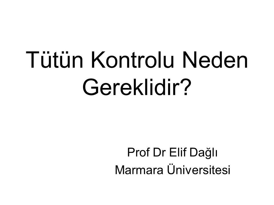 Tütün Kontrolu Neden Gereklidir? Prof Dr Elif Dağlı Marmara Üniversitesi