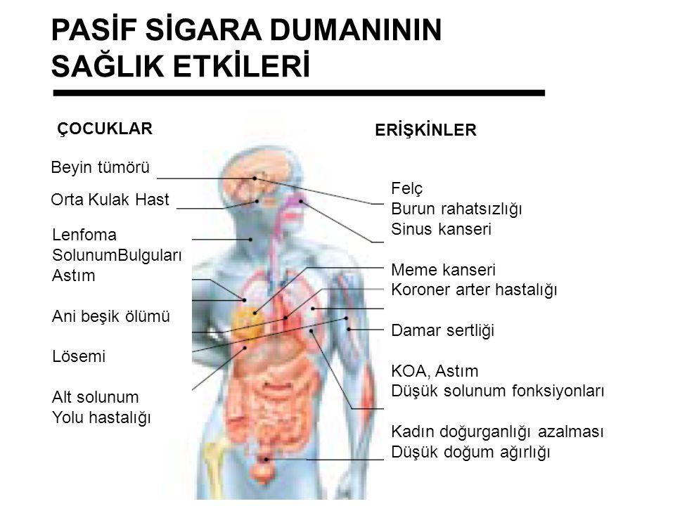 Beyin tümörü Orta Kulak Hast Lenfoma SolunumBulguları Astım Ani beşik ölümü Lösemi Alt solunum Yolu hastalığı ÇOCUKLAR Felç Burun rahatsızlığı Sinus kanseri Meme kanseri Koroner arter hastalığı Damar sertliği KOA, Astım Düşük solunum fonksiyonları Kadın doğurganlığı azalması Düşük doğum ağırlığı ERİŞKİNLER PASİF SİGARA DUMANININ SAĞLIK ETKİLERİ