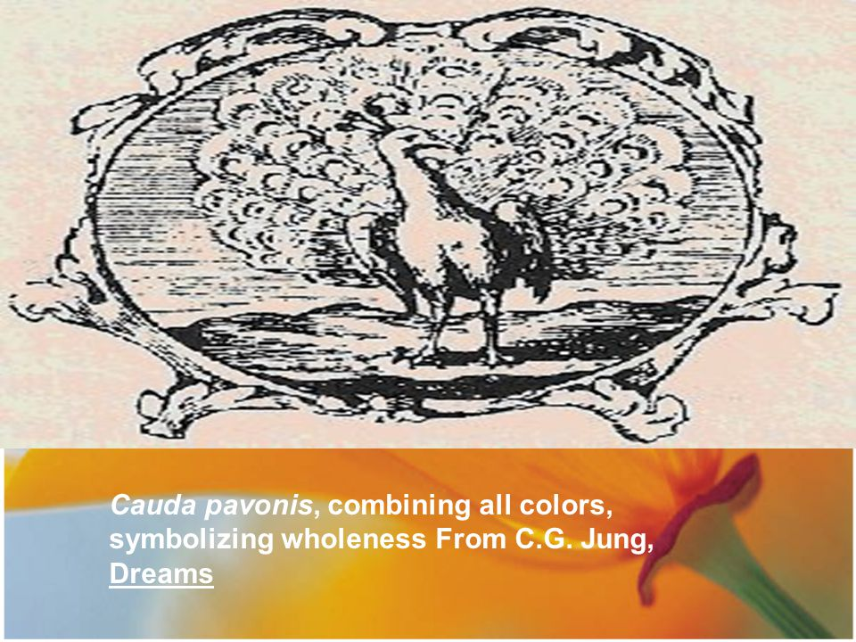 Cauda pavonis, combining all colors, symbolizing wholeness From C.G. Jung, Dreams