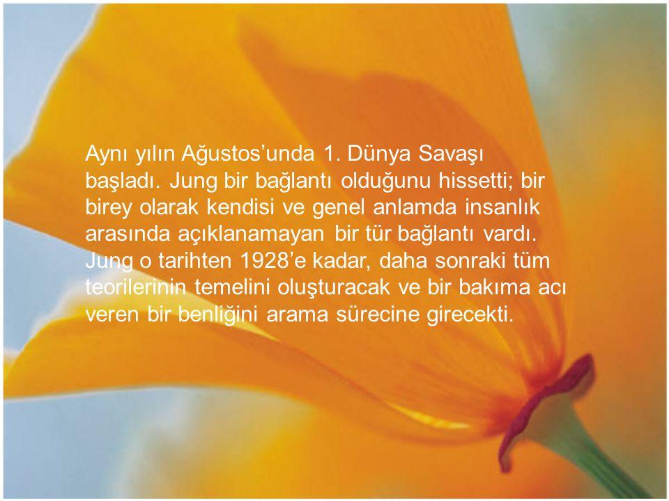 Aynı yılın Ağustos'unda 1. Dünya Savaşı başladı. Jung bir bağlantı olduğunu hissetti; bir birey olarak kendisi ve genel anlamda insanlık arasında açık