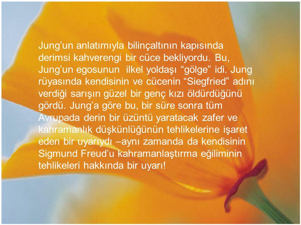 """Jung'un anlatımıyla bilinçaltının kapısında derimsi kahverengi bir cüce bekliyordu. Bu, Jung'un egosunun ilkel yoldaşı """"gölge"""" idi. Jung rüyasında ken"""