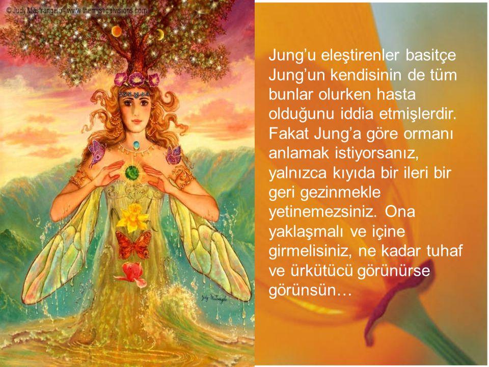 Jung'u eleştirenler basitçe Jung'un kendisinin de tüm bunlar olurken hasta olduğunu iddia etmişlerdir. Fakat Jung'a göre ormanı anlamak istiyorsanız,