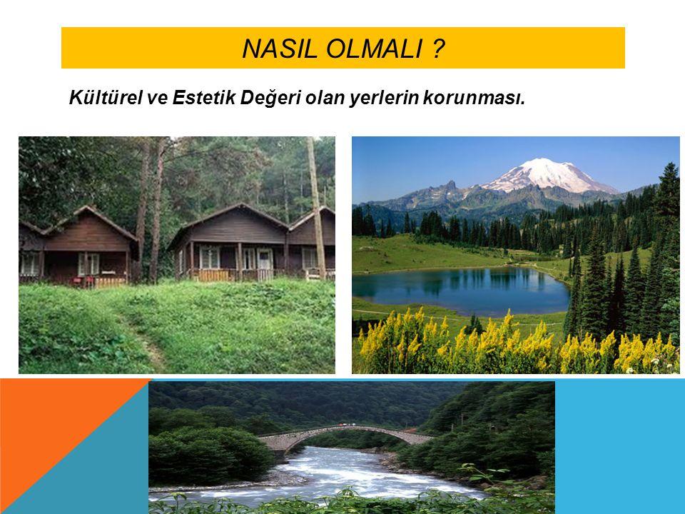 NASIL OLMALI ? Kültürel ve Estetik Değeri olan yerlerin korunması.