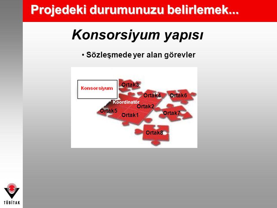 Konsorsiyum yapısı Sözleşmede yer alan görevler Koordinatör Ortak6 Ortak5 Ortak4 Ortak1 Ortak2 Ortak3 Ortak8 Ortak7 Projedeki durumunuzu belirlemek...