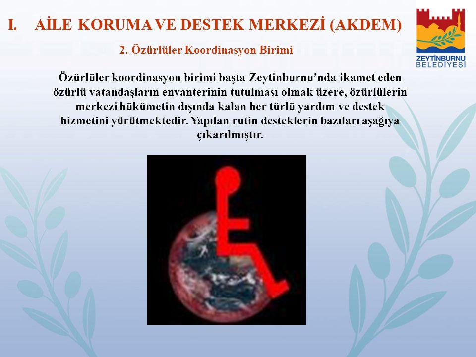 Özürlüler koordinasyon birimi başta Zeytinburnu'nda ikamet eden özürlü vatandaşların envanterinin tutulması olmak üzere, özürlülerin merkezi hükümetin