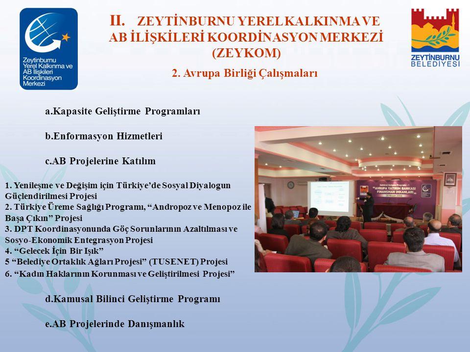 a.Kapasite Geliştirme Programları b.Enformasyon Hizmetleri c.AB Projelerine Katılım 1. Yenileşme ve Değişim için Türkiye'de Sosyal Diyalogun Güçlendir