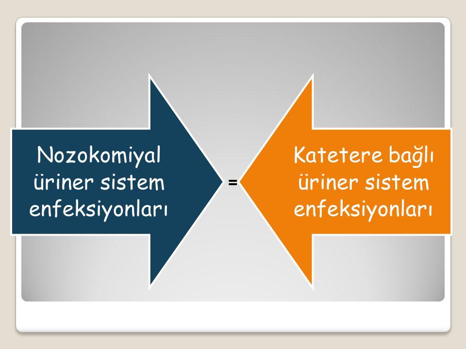 Nozokomiyal üriner sistem enfeksiyonları Katetere bağlı üriner sistem enfeksiyonları =