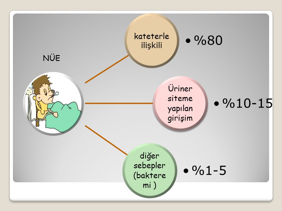 kateterle ilişkili %80 Üriner siteme yapılan girişim %10-15 diğer sebepler (baktere mi ) %1-5 NÜE