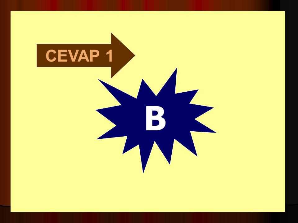 CEVAP 1 B