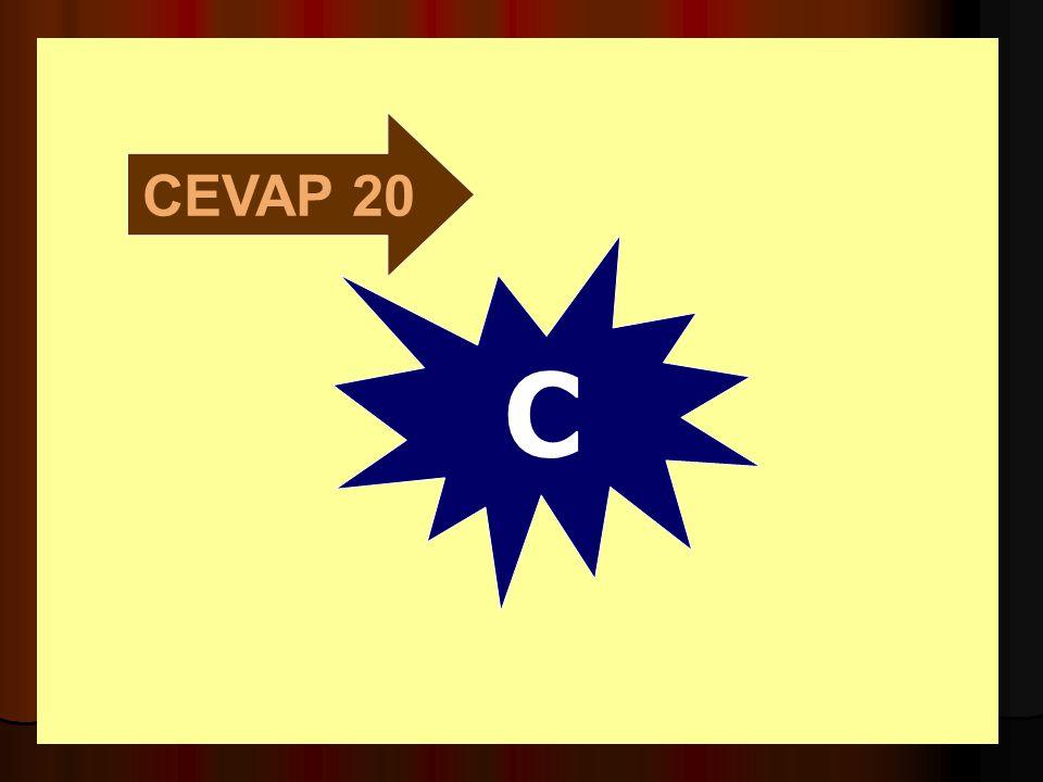 CEVAP 20 C