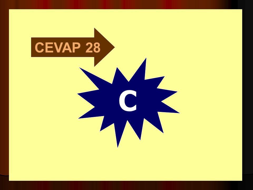 CEVAP 28 C