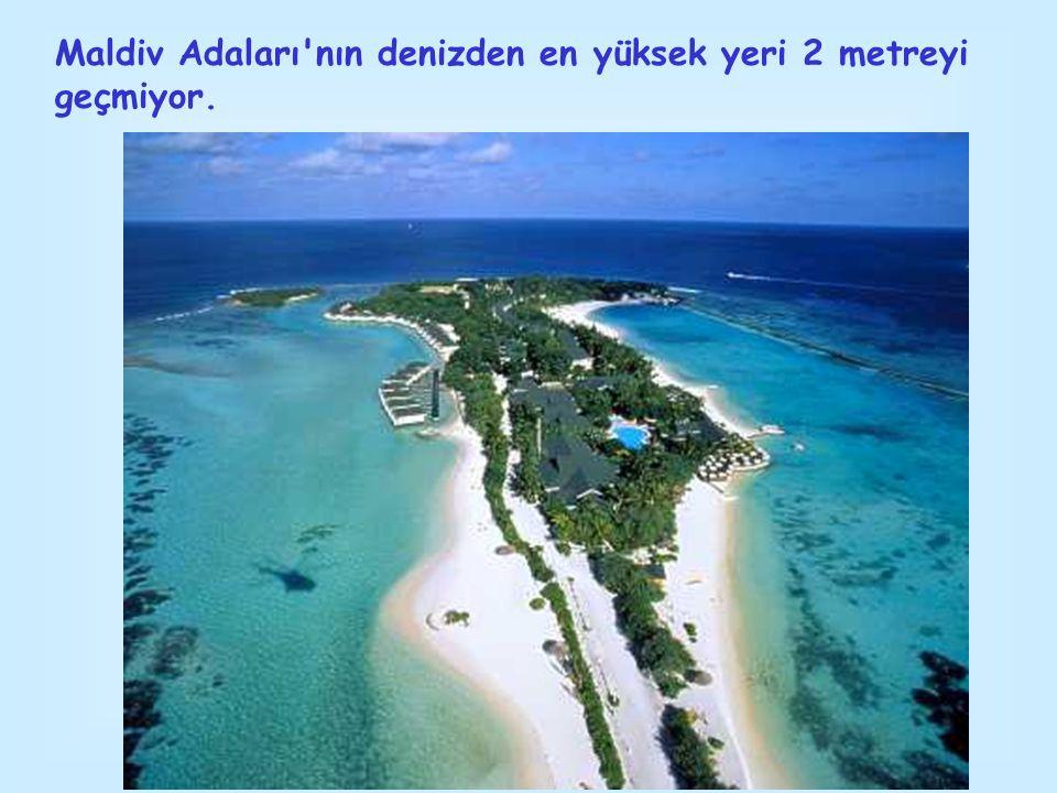 Maldiv Adaları'nın denizden en yüksek yeri 2 metreyi geçmiyor.