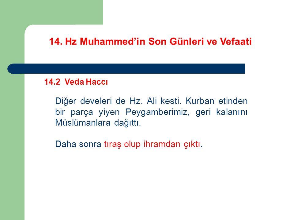 14.Hz Muhammed'in Son Günleri ve Vefaati 14.2 Veda Haccı Diğer develeri de Hz.