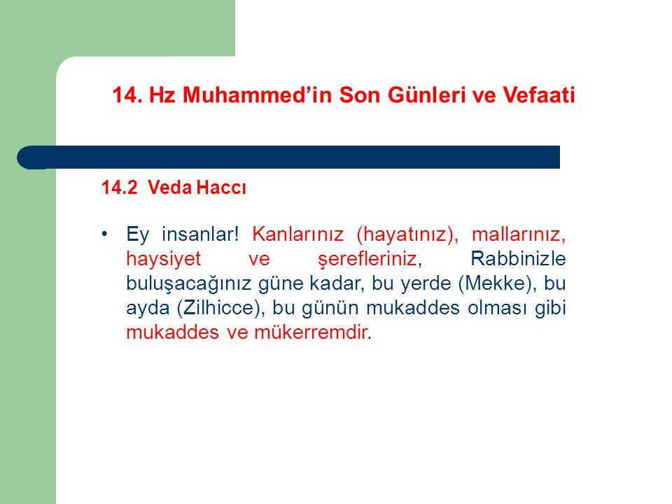 14.Hz Muhammed'in Son Günleri ve Vefaati 14.2 Veda Haccı Ey insanlar.