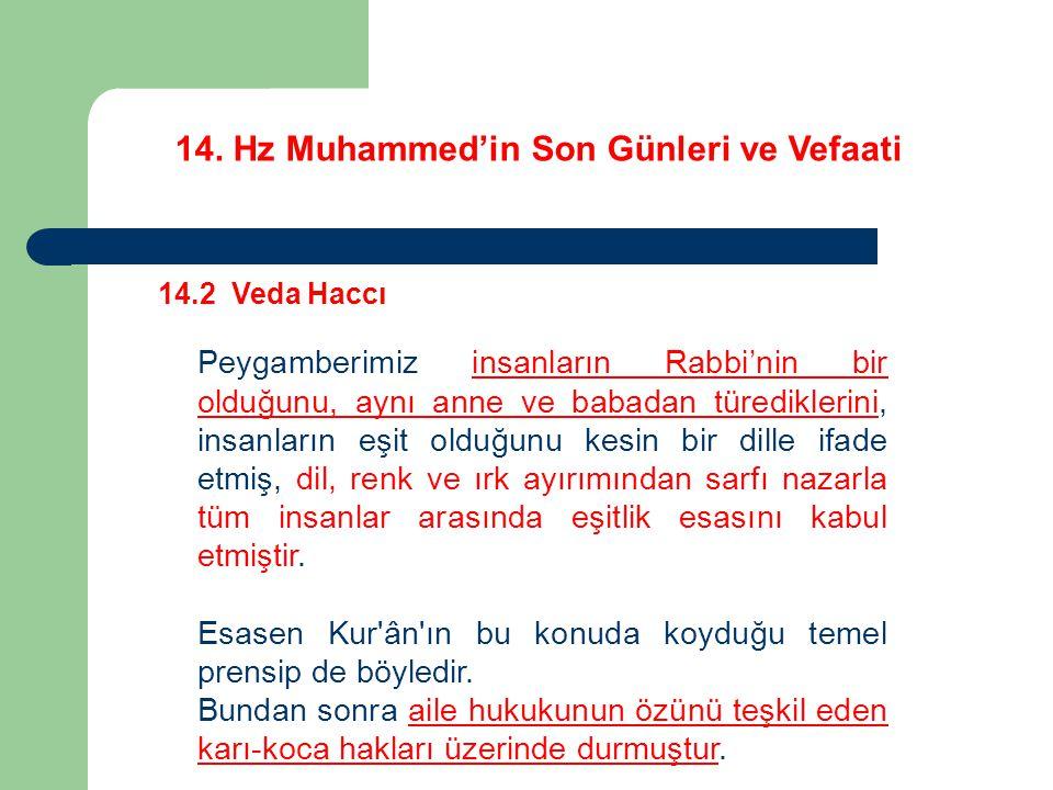 14. Hz Muhammed'in Son Günleri ve Vefaati 14.2 Veda Haccı Peygamberimiz insanların Rabbi'nin bir olduğunu, aynı anne ve babadan türediklerini, insanla
