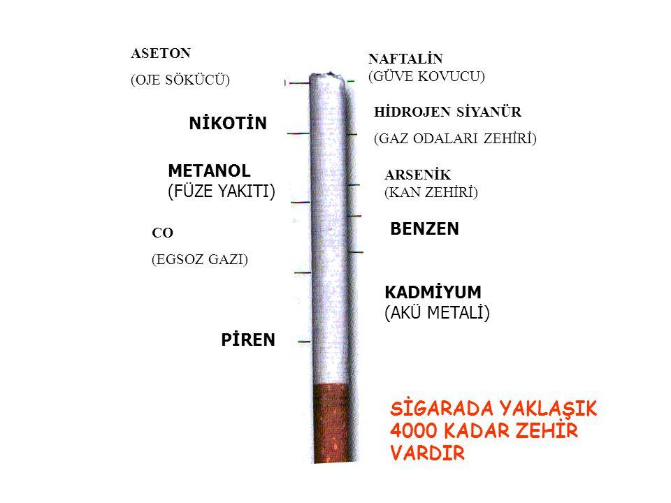 HİDROJEN SİYANÜR (GAZ ODALARI ZEHİRİ) ARSENİK (KAN ZEHİRİ) BENZEN KADMİYUM (AKÜ METALİ) SİGARADA YAKLAŞIK 4000 KADAR ZEHİR VARDIR ASETON (OJE SÖKÜCÜ) NİKOTİN CO (EGSOZ GAZI) PİREN METANOL (FÜZE YAKITI) NAFTALİN (GÜVE KOVUCU)
