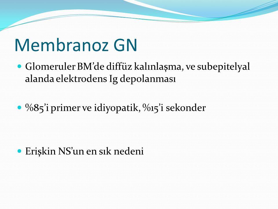 Membranoz GN Glomeruler BM'de diffüz kalınlaşma, ve subepitelyal alanda elektrodens Ig depolanması %85'i primer ve idiyopatik, %15'i sekonder Erişkin