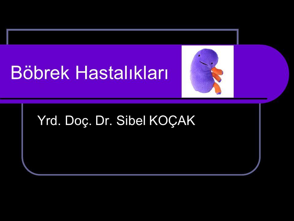 Böbrek Hastalıkları Yrd. Doç. Dr. Sibel KOÇAK