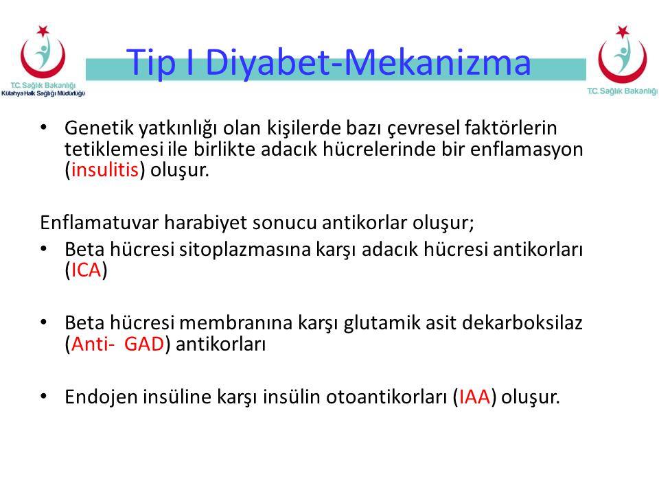 Tip I Diyabet-Mekanizma Genetik yatkınlığı olan kişilerde bazı çevresel faktörlerin tetiklemesi ile birlikte adacık hücrelerinde bir enflamasyon (insu